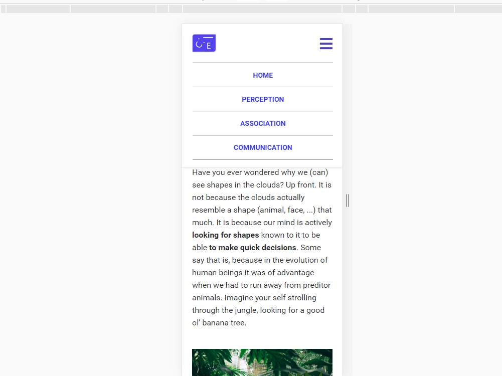 image of opened mobile navigation menu